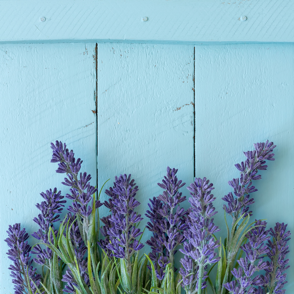 Uncommon Beauty Uses For Lavender Oil: The Lesser-Known Benefits of the Fragrant Extract