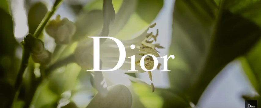 A Sneak Peek into the Heart of Dior's New Fragrance