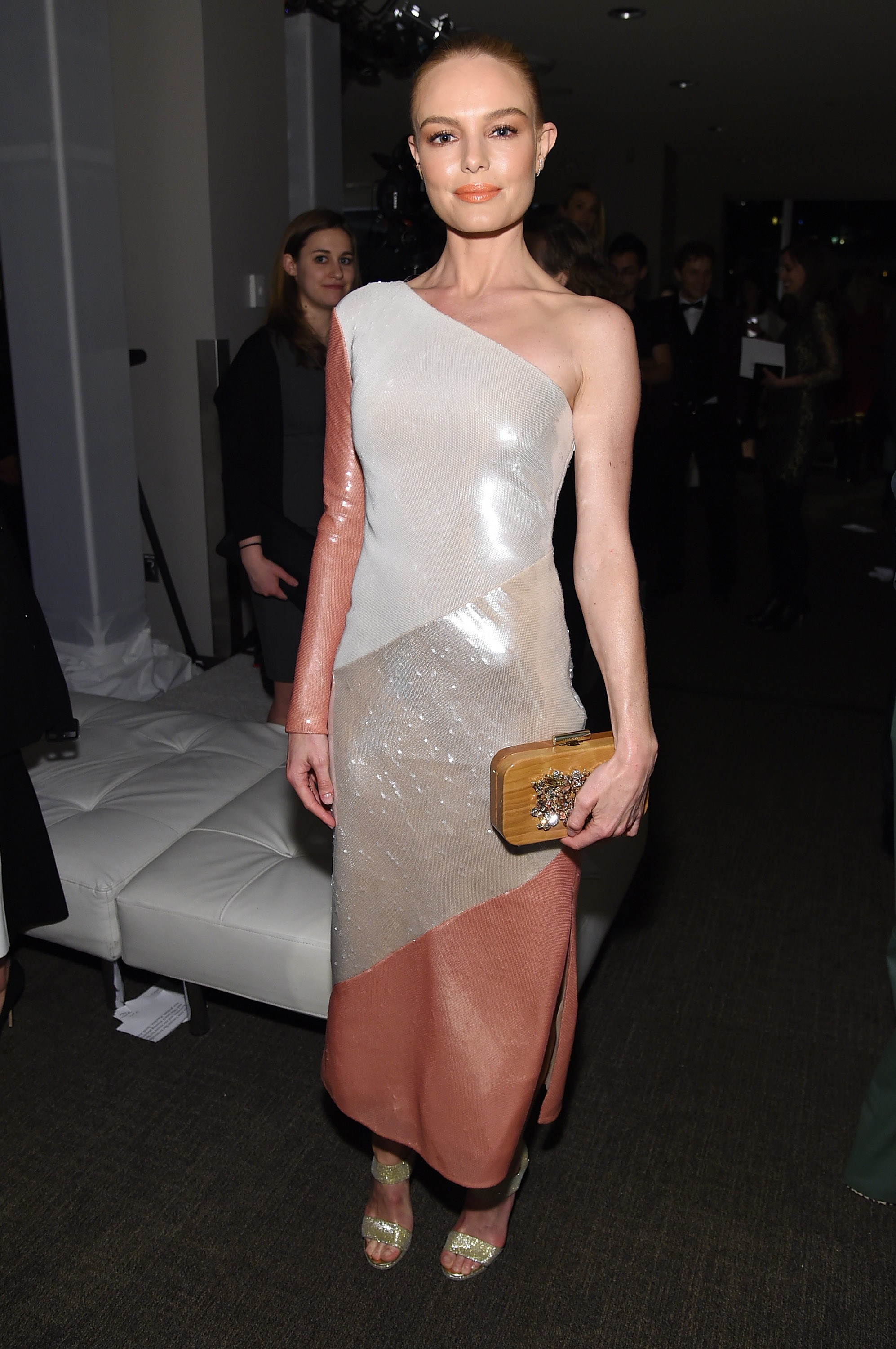 Celebrity Style Red Carpet Kate Bosworth