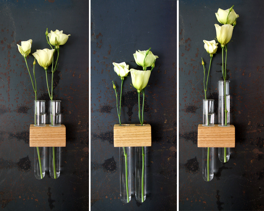flowers arranged in test tubes