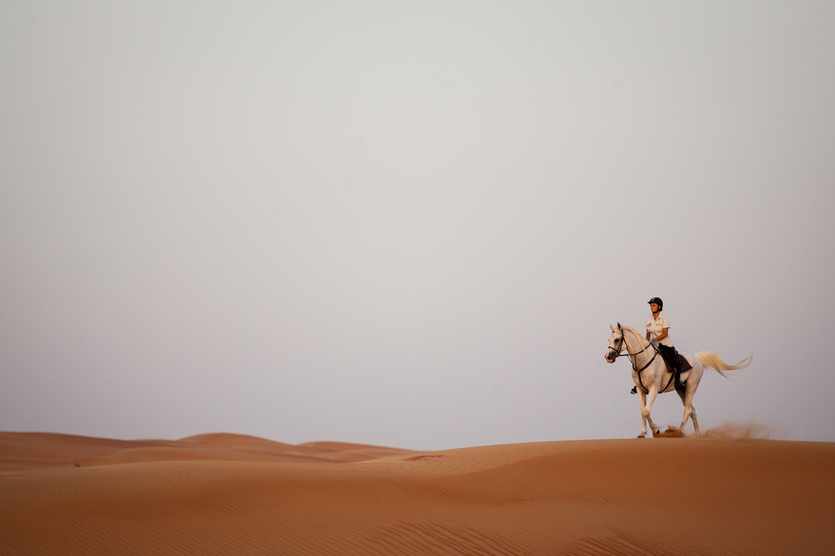 horse riding package al maha dubai-min