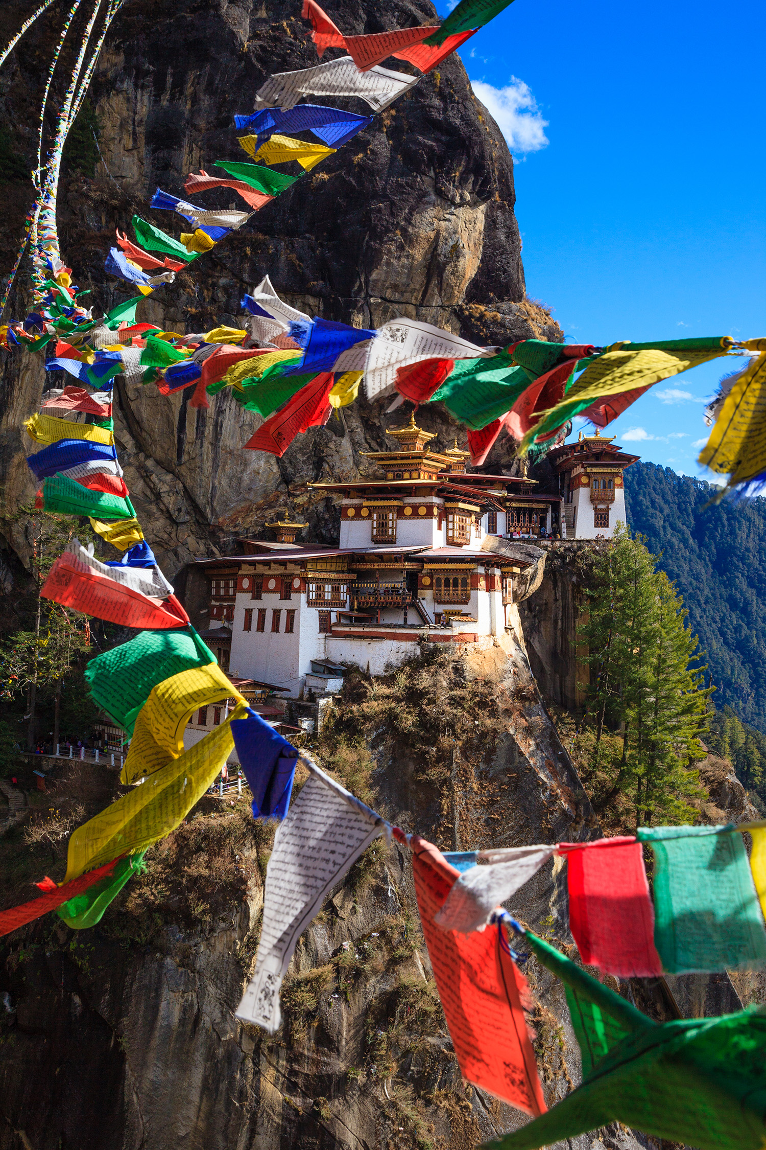 Tiger Nest with Prayer Flags